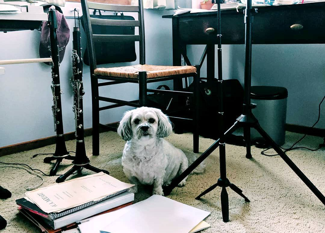 Practice-Buddy-and-Supervisor